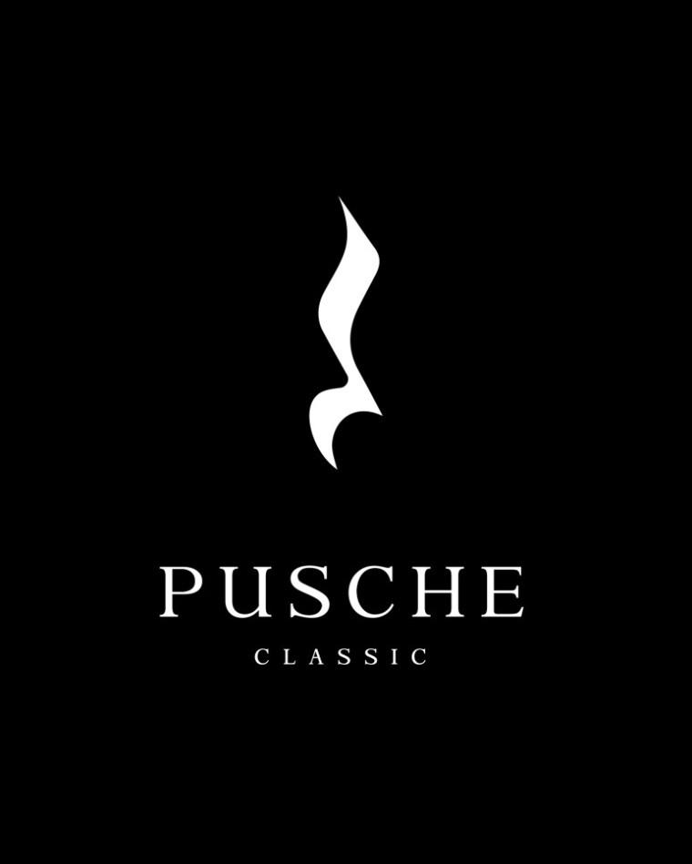 logo-pusche